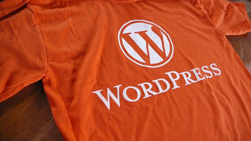 photo credit: WordPress? I got the T-shirt via photopin (license)